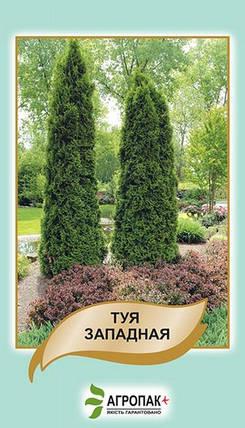 Семена Туя западная 0,1 г W.Legutko 5192, фото 2
