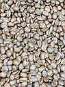 Кофе арабика в зернах Мексика Esmeralda 1кг, фото 3
