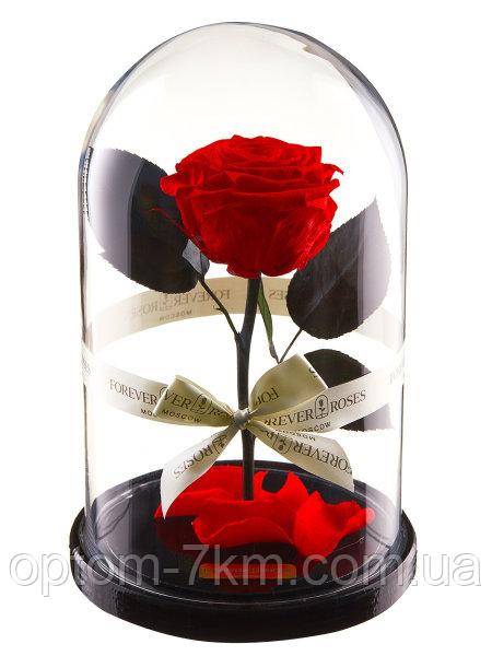 Роза в колбі з LED підсвічуванням МАЛЕНЬКА 3540VJ