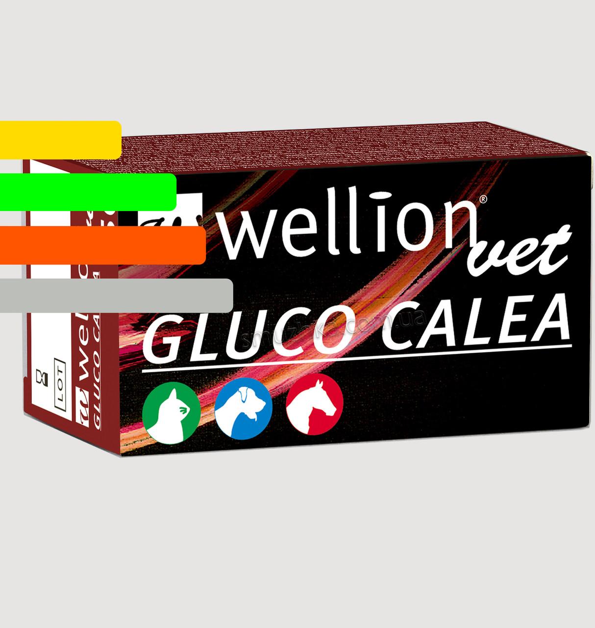 Тест-полоски Wellion Vet Gluco Calea #50 - Глюко Калеа