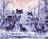 Набор-раскраска по номерам Волчье семейство