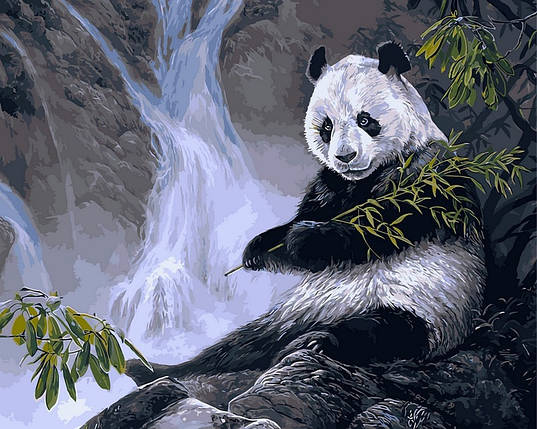 Набор-раскраска по номерам Панда с бамбуком Худ Лаура Марк-Файнберг, фото 2