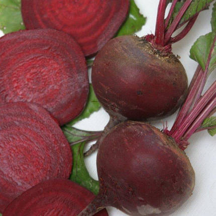 Семена Свекла Бордо 20 гр W.Legutko (2563), фото 2