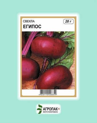 Семена Свекла Египос 20 гр W.Legutko (2564), фото 2