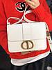 Модная сумочка DIOR CHALK (реплика)