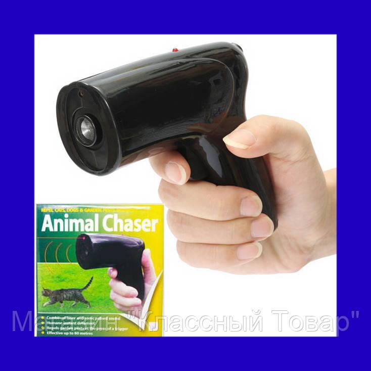 SALE! Ультразвуковой отпугиватель собак с лазером Scram Patrol Sonic Animal Chaser JB546