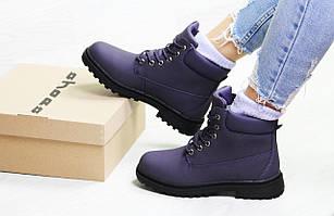 Ботинки женские зимние Timberland,ботинки Тимберленд,фиолетовые