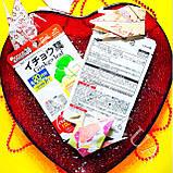 Гинкго Билоба Ginkgo leaf Daiso Япония, фото 4