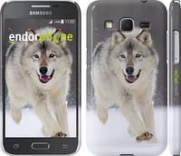 "Чехол на Samsung Galaxy Core Prime G360H Бегущий волк ""826c-76"""
