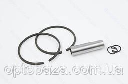 Цилиндро-поршневой комплект 44 мм для мотокос серии 40 - 51см, куб, фото 3