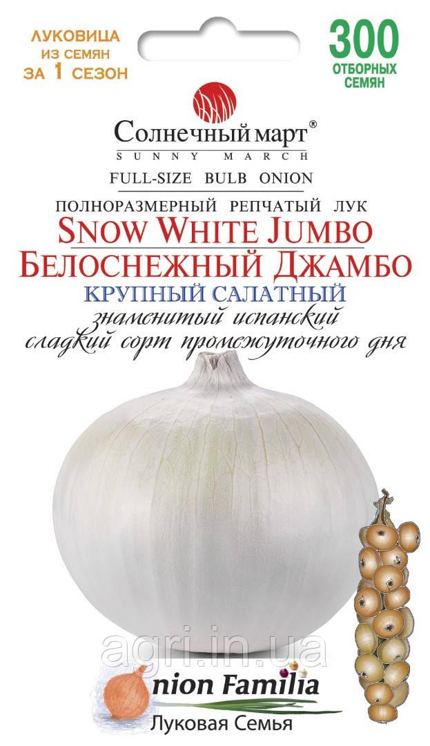 Лук Белоснежный Джамбо, 300шт.