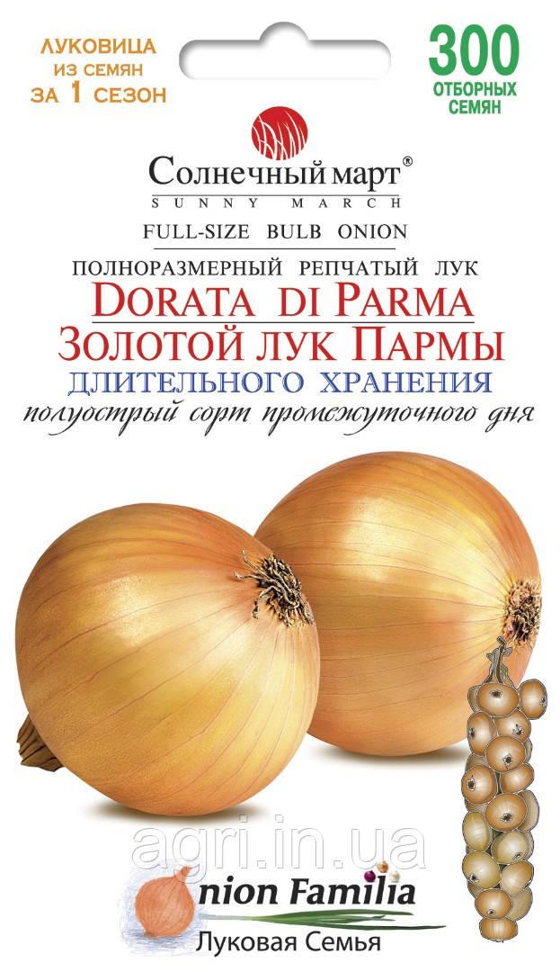 Лук Золотой лук Пармы, 300шт.