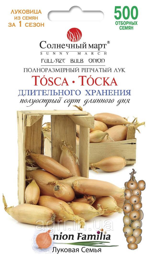 Лук Тоска, 500шт.