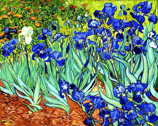 Набор-раскраска по номерам  Ирисы худ Ван Гог Винсент, фото 2