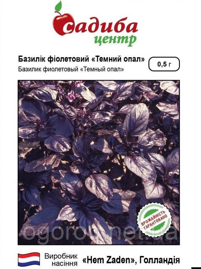 Семена базилика Тёмный Опал Hem Zaden Голландия 0,5 г