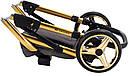 Коляска 2 в 1 Adamex Luciano Polar (Gold) Q89 графит (золотой люрекс) - черный кожа (перфорация), фото 10