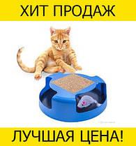 Игрушка для кошек Oxgord Cat Mouse Chase
