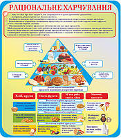 """Стенд для школы """"Правильное питание"""""""