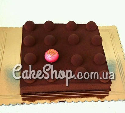 Форма для заливки и формовки десертов 16х16см, h-10см
