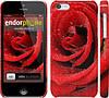 "Чехол на iPhone 5c Красная роза ""529c-23"""