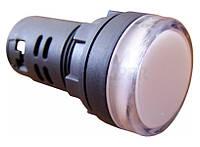 Сигнальна арматура AD16-22DS прозорий 220V АC