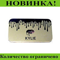 Кисточки для макияжа Kylie (12шт) Profesional brush set- Silver!Розница и Опт