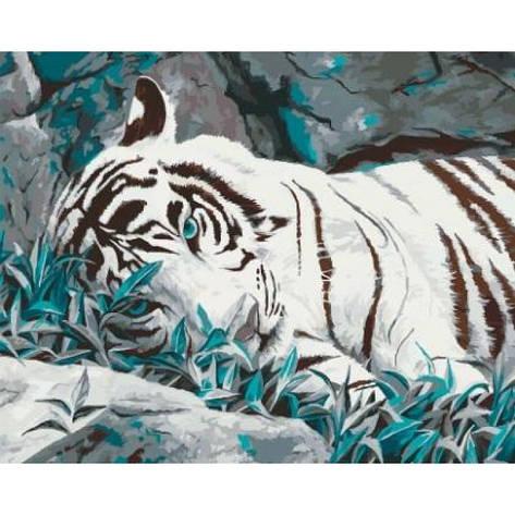 Картина по номерам Белый тигр КНО2453 40x50см Идейка, фото 2