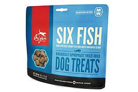 Сухой корм Orijen 6 Fish Dog со вкусом рыбы для собак всех пород и возрастов, 92 г