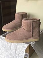 Женские Угги  Ugg РОЗОВЫЕ  Mini Натуральная Кожа / Овчина Водоотталкивающая пропитка, женская зимняя обувь
