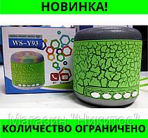 Портативная колонка Bluetooth WSTer WS-Y93 со светомузыкой!Розница и Опт