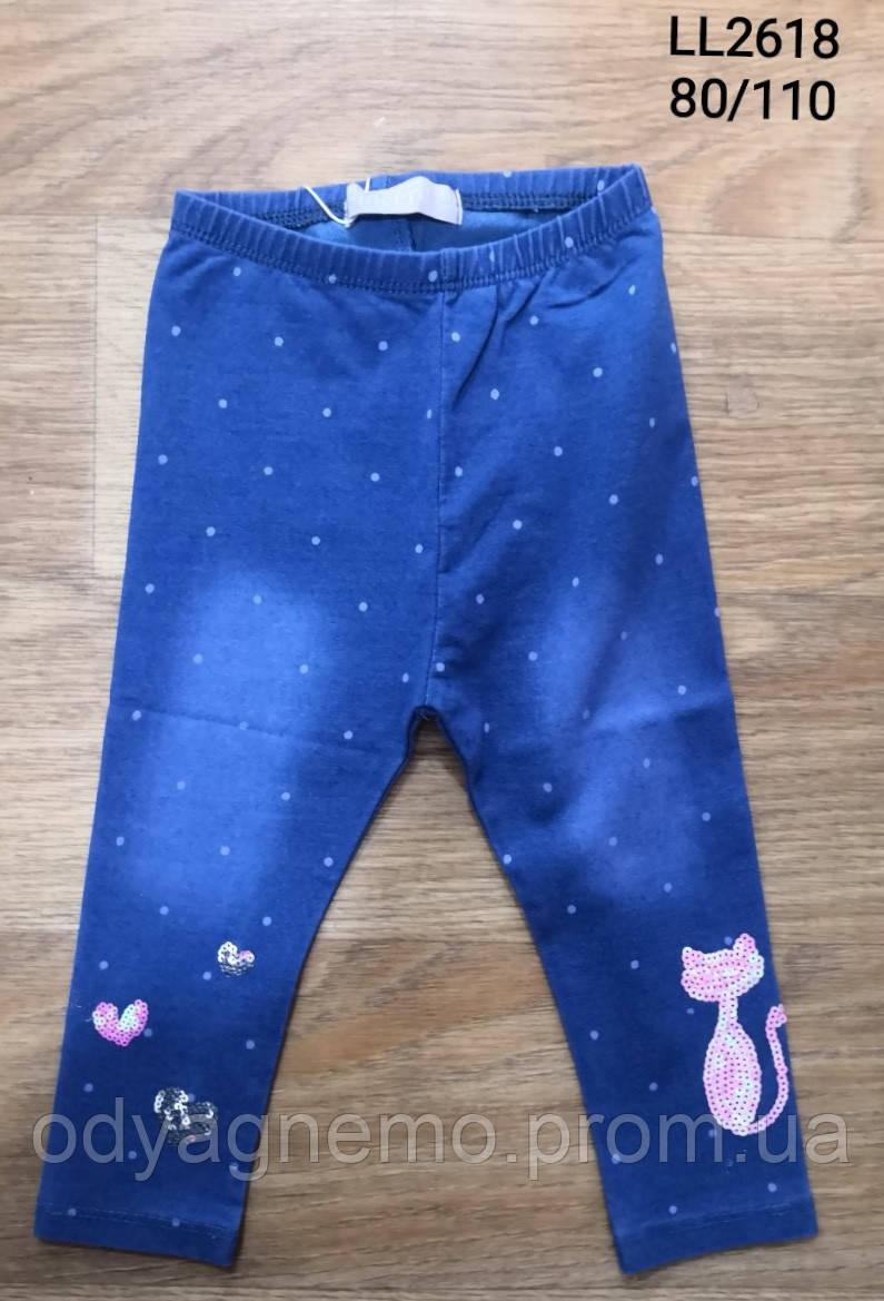 Лосины с имитацией джинсы для девочек Sincere оптом, 80-110 pp.