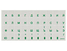Наклейки на клавіатуру BRAIN green (STBRTRGREEN)
