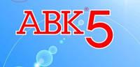 Курсы сметного дела с использованием АВК-5
