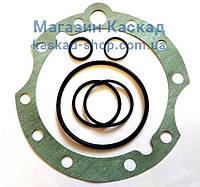 Комплект уплотнений гидро мотора SMF22  (РТИ)