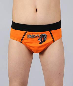 Трусы для мальчика  Altedo #104 104 см оранжевые, фото 2