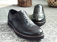 Мужские туфли броги кожа Webster