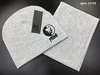 Зимняя шапка + бафф. Мужской комплект Pitbull . ТОП качество!!! Реплика