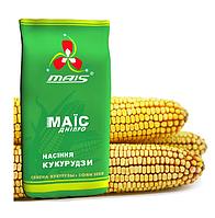 Насіння кукурудзи МАЇС ВІЗИР
