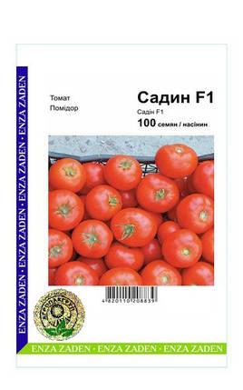 Семена Томат Садин F1 100 сем Enza Zaden (2238), фото 2