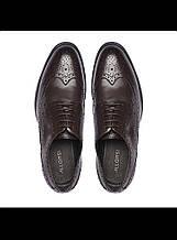 Туфли мужские коричневые Allonsi
