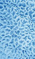 Фотообои на бумажной основе - Голубой коралл (ширина -1,27)