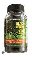 Black Widow Spider 1 капсула (пробник)