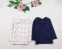 Кофта для дівчинки з комірчиком біла в квіточки 3-24міс
