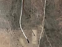 Кабель для подогрева стен 33 Ом Tescabo углеволоконный углеродный греющий карбоновый обогрев нагревательный