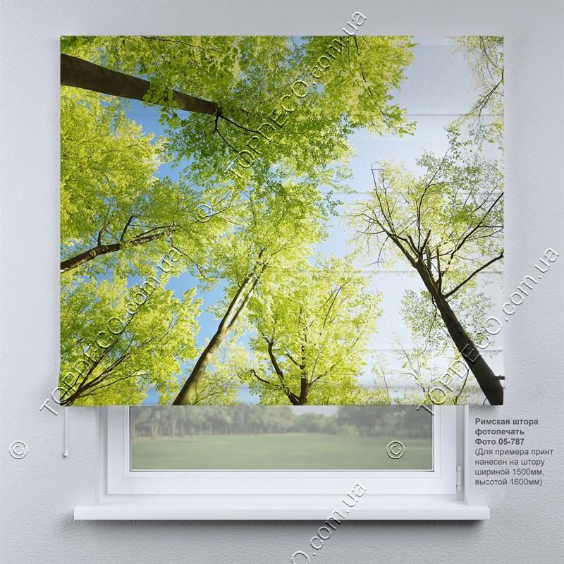 Римская фото штора Природа. Бесплатная доставка. Инд.размер. Гарантия. Арт. 05-787