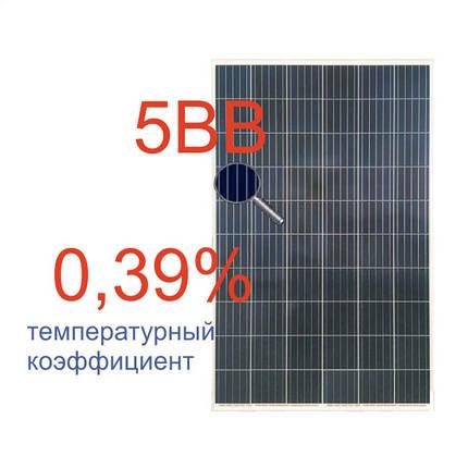 Солнечная батарея 280Вт поликристаллическая RSM60-6-280P 5BB Risen, фото 2