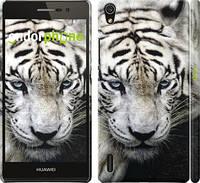 """Чохол на Huawei Ascend P7 Сумний білий тигр """"106c-49"""""""