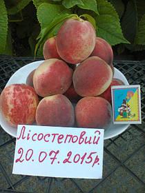 Саженцы персика: сорта раннего срока созревания