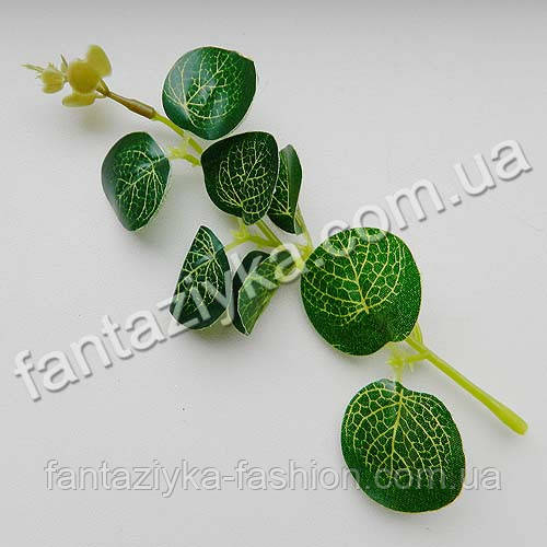 Веточка с листиками эвкалипта 15см, Люкс