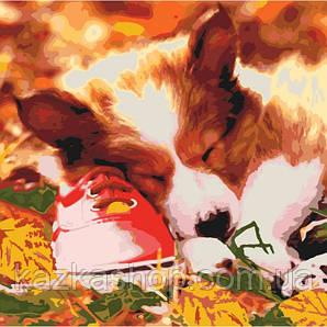 Картина по номерам - Сплячий малюк (КНО4040)